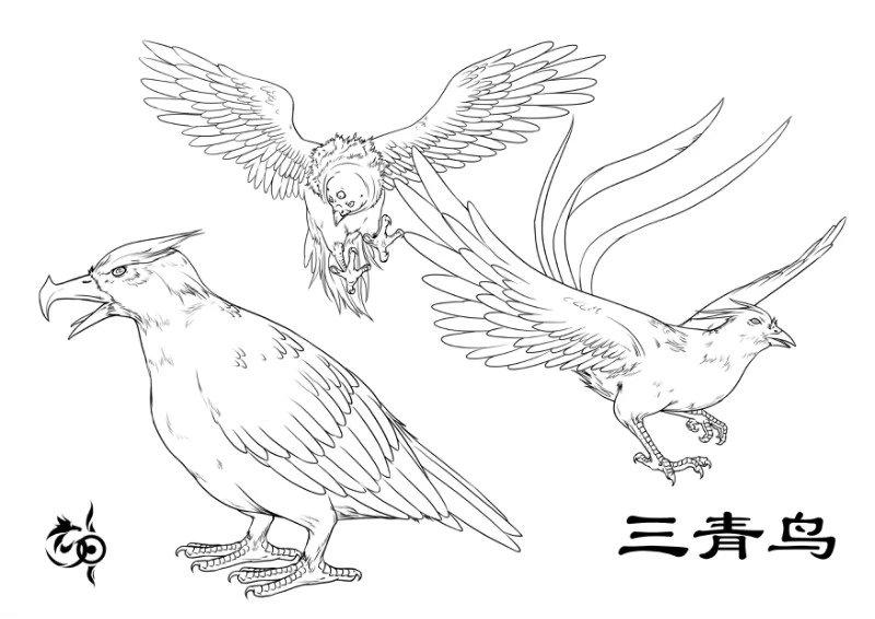 三青鸟插图