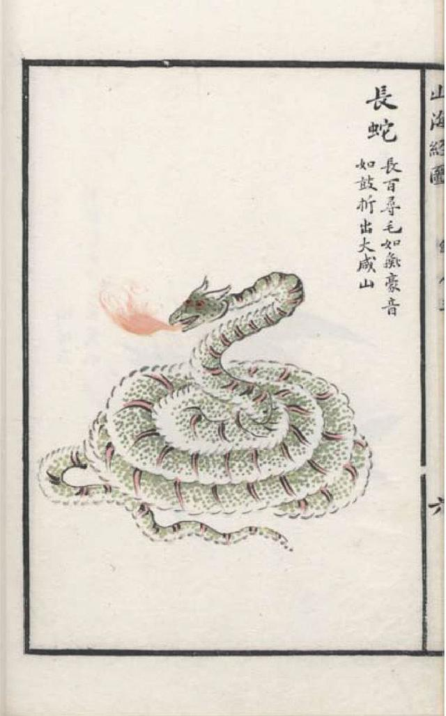 长蛇插图1