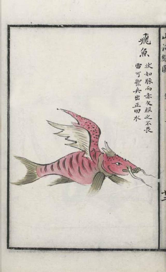 飞鱼[如豚]插图