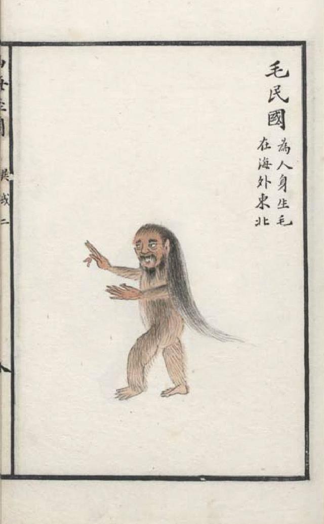 毛民国插图