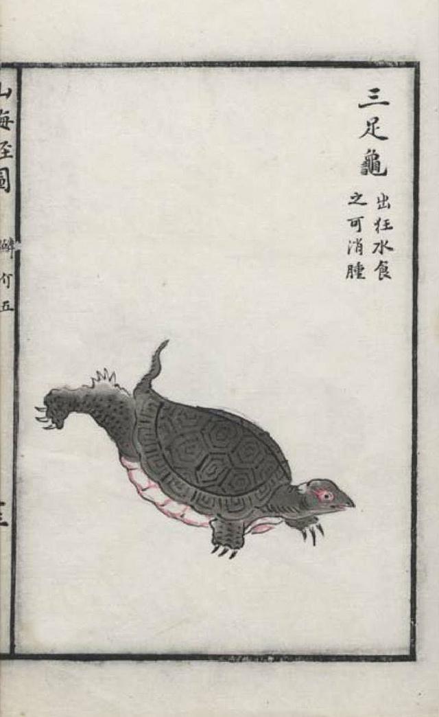 三足龟插图