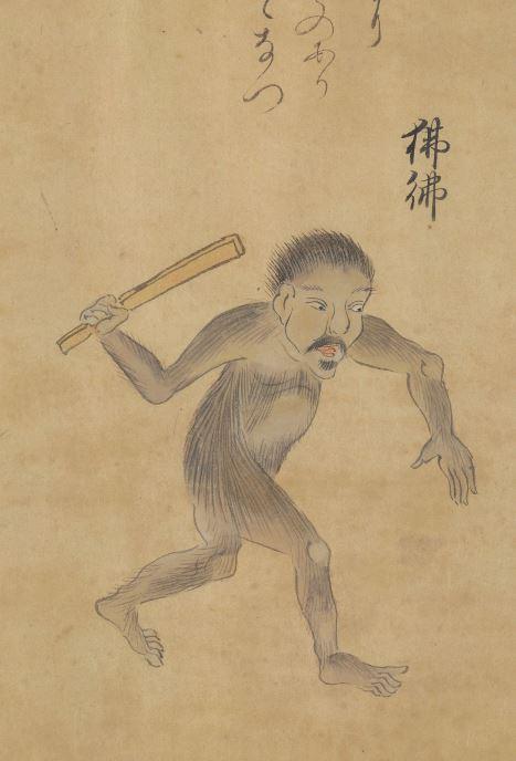 狒狒插图2