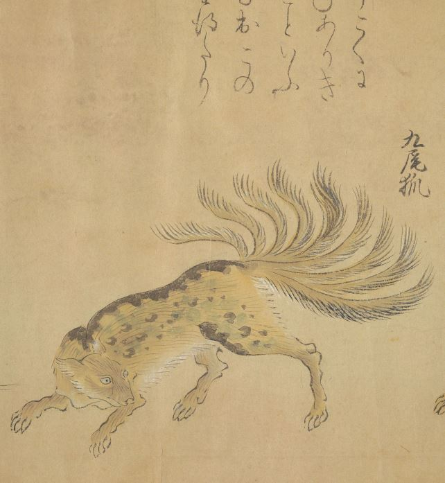 九尾狐插图4