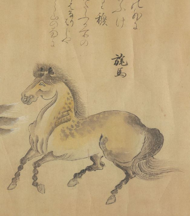 旄马插图1
