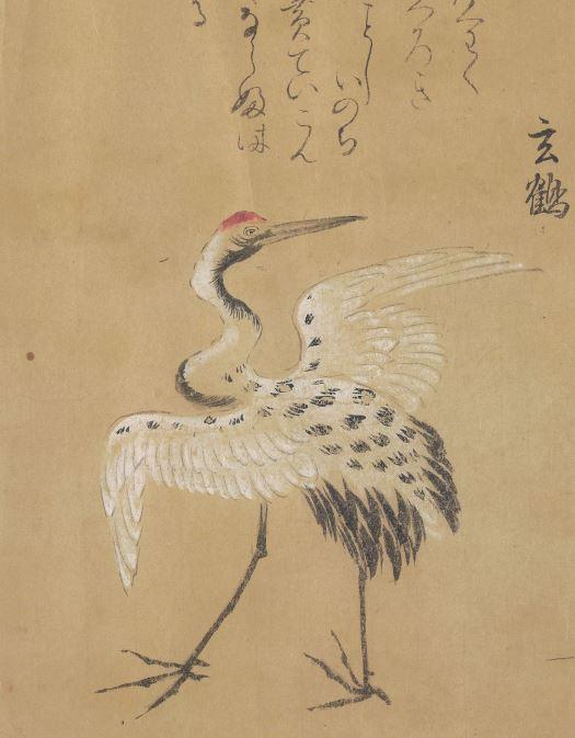 玄鹤插图1