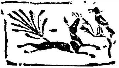 九尾狐插图1