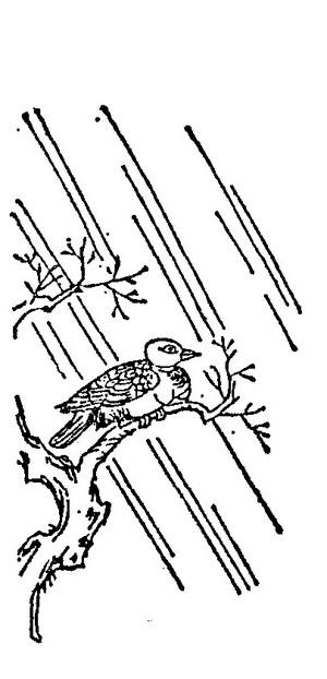 姑获鸟插图2