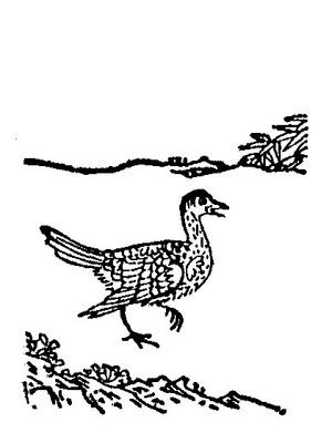 木客插图(1)