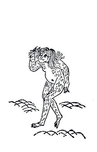 山魈(山臊)插图1