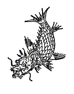 鱼虎插图2