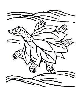 朱鳖鱼插图1