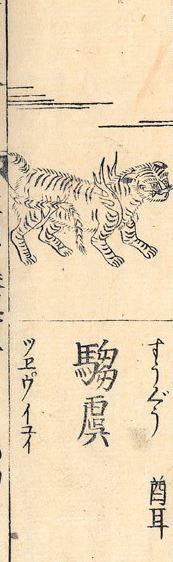 驺虞插图(2)