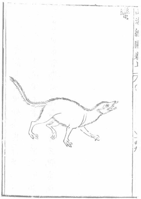 蛮蛮[兽]插图(1)