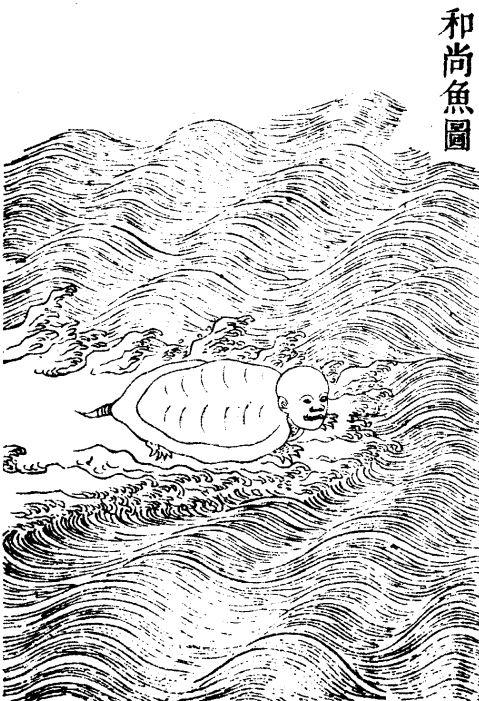 海和尚(在子)插图4