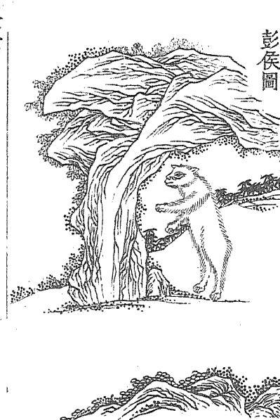 彭侯插图(1)