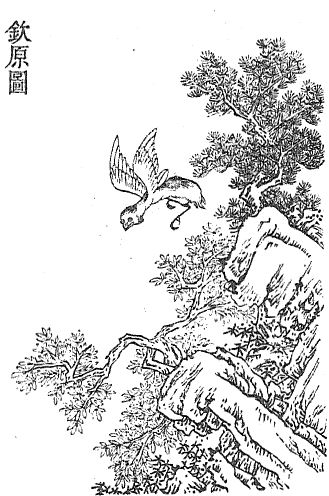 钦原插图(1)
