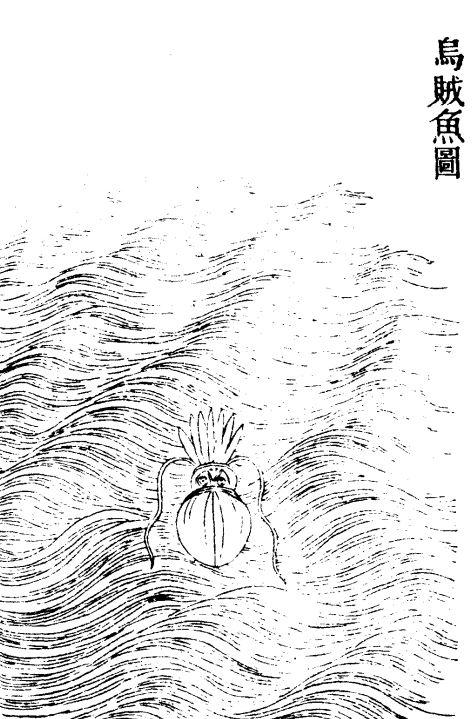 乌鰂(河伯度事小吏)插图1
