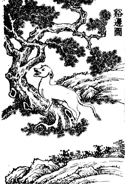 溪边插图(1)