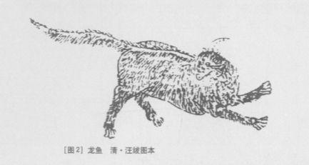 龙鲤(龙鱼)插图1