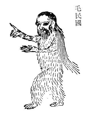 毛民国插图1