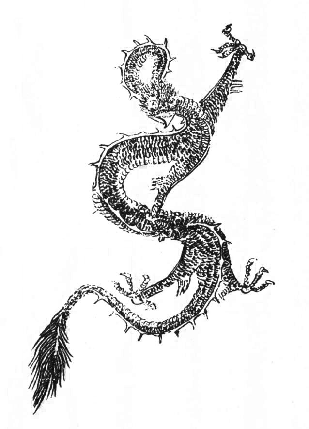 鸟首龙身神插图1
