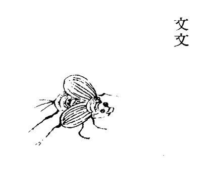 文文插图(1)