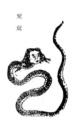 窫窳[蛇身人面]插图
