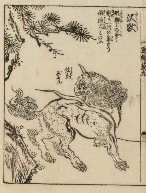 白泽插图(4)