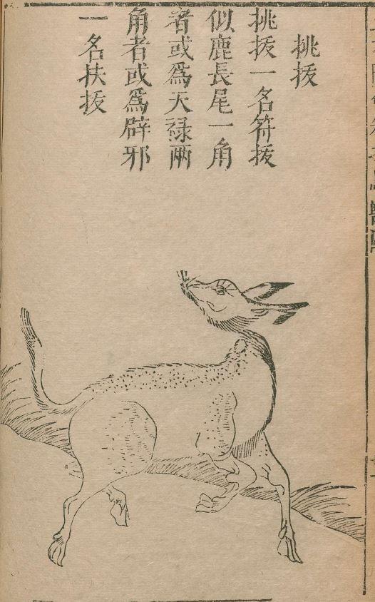 桃拔插图(1)